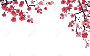 9242198-Illustration-of-flowering-branch-of-Sakura-Stock-Vector-cherry-spring