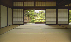 tatami1-large